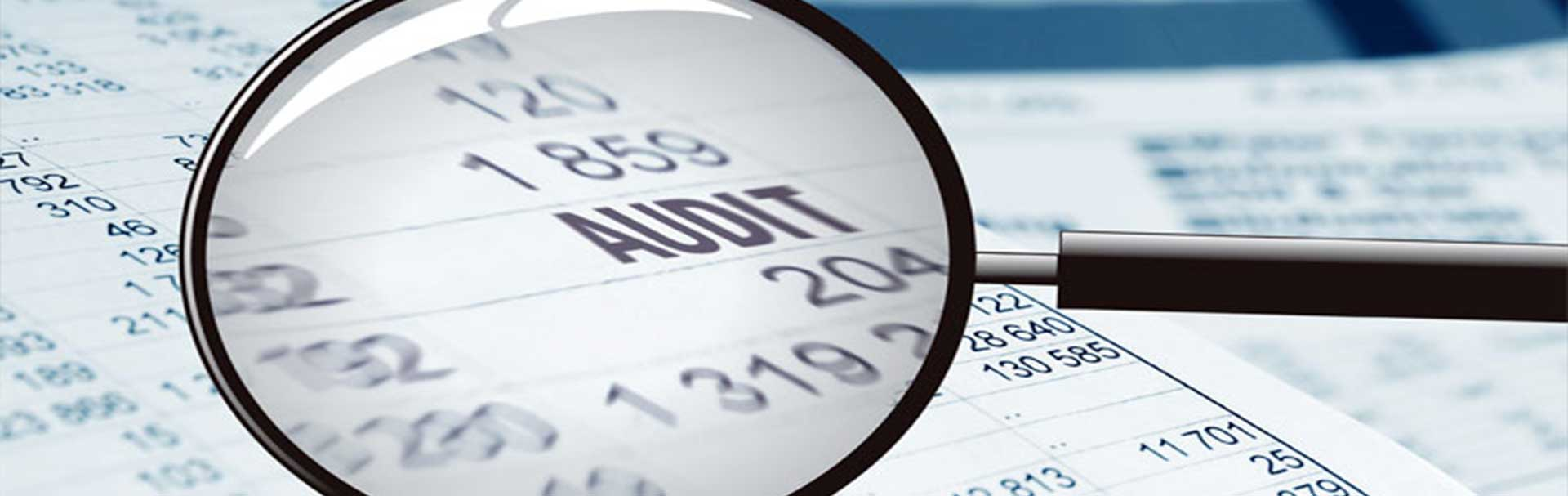 Forensic Audits/Investigations